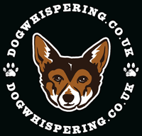Dog Whispering Dog Training Essex